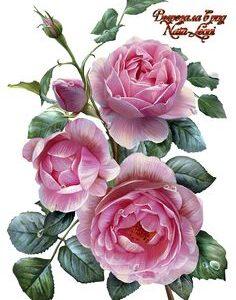 НОВИНКА!!! Трояндова серія .